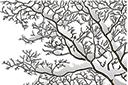 Трафарет Зимнее дерево