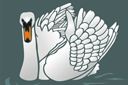 Лебедь 1